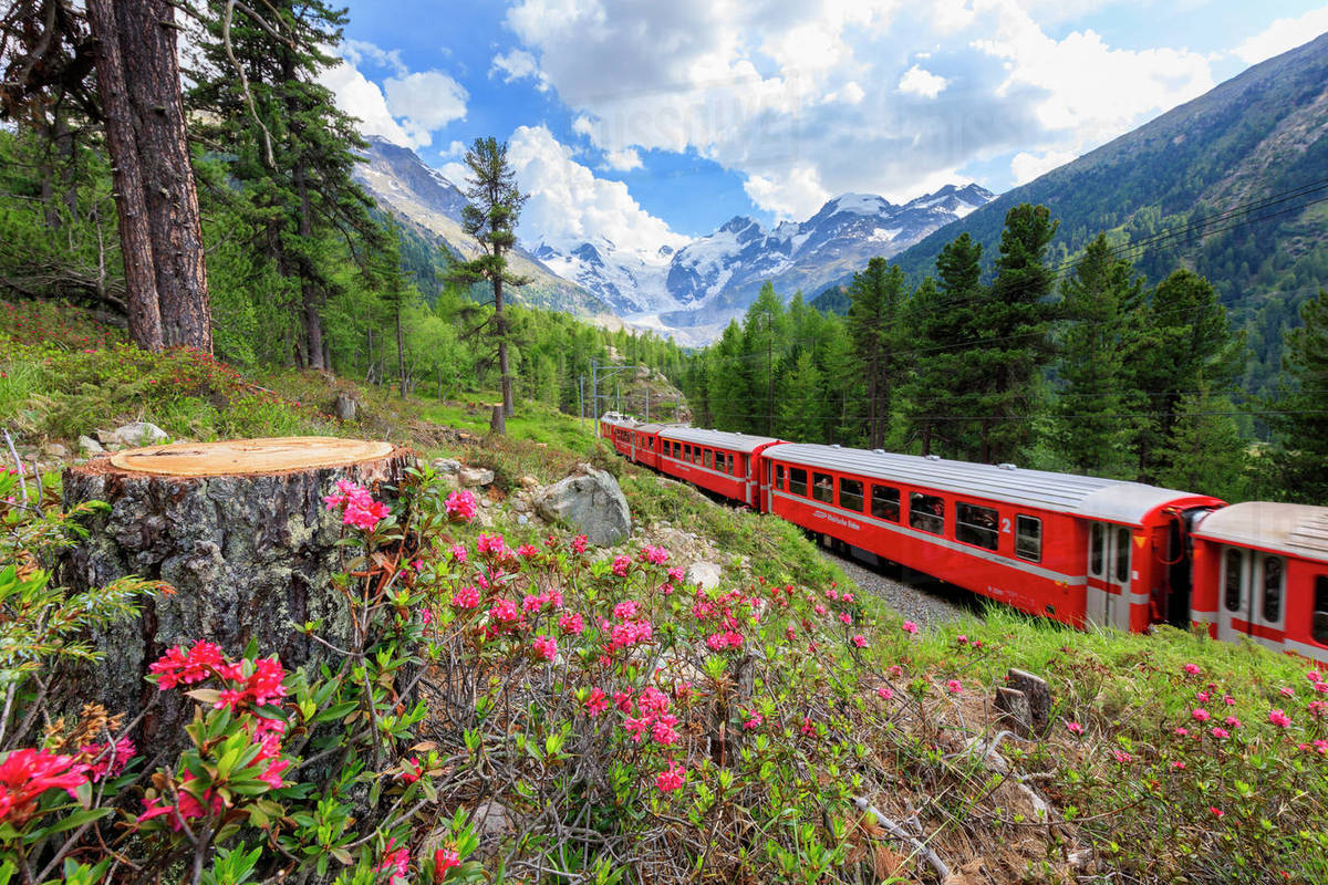 Engandina Bernina Express